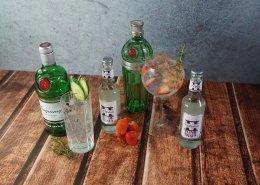 Auf einem Tisch stehen unterschiedliche Flaschen Gin, Tonic, sowie Gewürze und Früchte. 2 Gläser sind bereits fertig gemischt und stehen zum Verköstigen bereit.